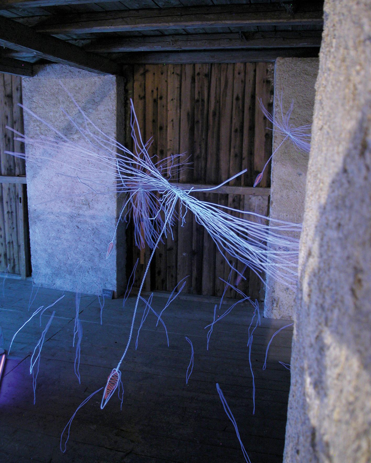 """Für die Ausstellung """"Sommerfrische"""" über den Nenzinger Himmel gestaltete Peter Weibel eindrucksvolle Lichtkunst."""