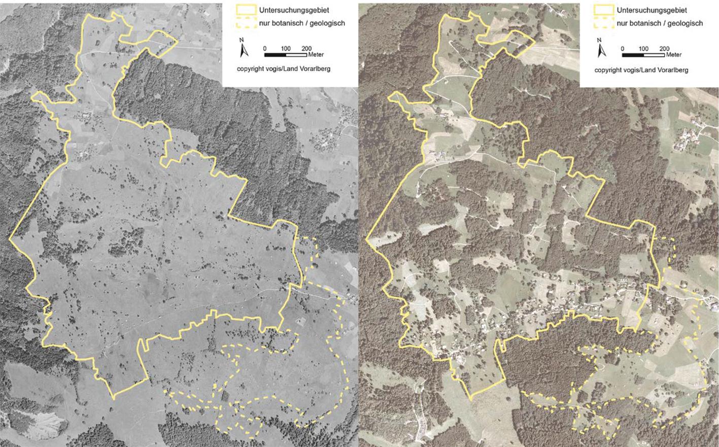 Der Vergleich der Luftbilder zeigt klar, dass sich der Wald von 1951 bis heute große Flächen zurückerobert hat.